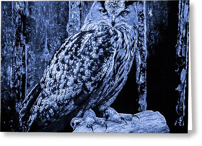 The Great Horned Owl Blue Indigo Greeting Card