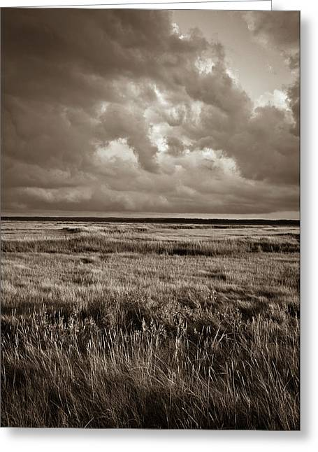 The Great Marsh Greeting Card