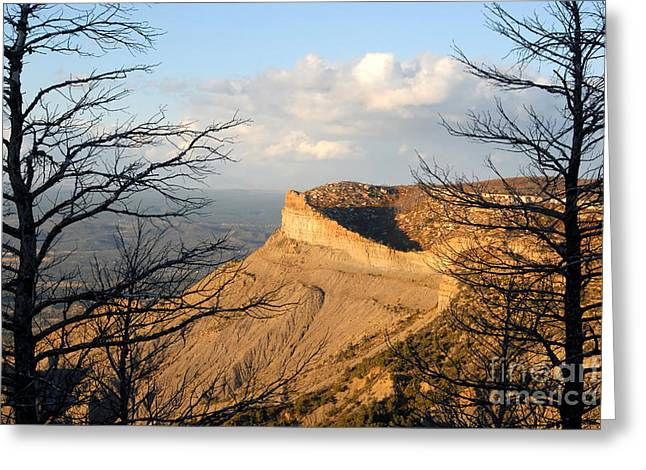 The Great Mesa Greeting Card by David Lee Thompson