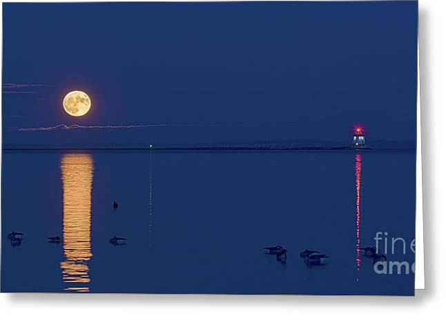 The Great Supermoon Greeting Card by James Brown