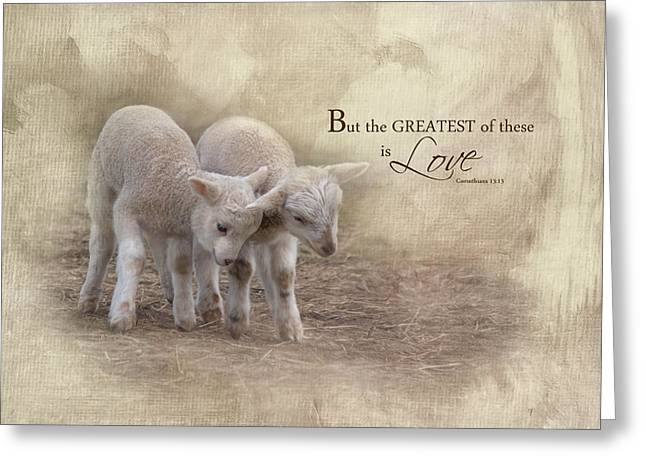 Greeting Card featuring the photograph The Greatest Is Love by Robin-Lee Vieira