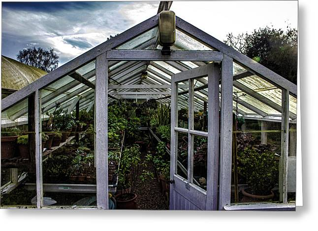The Greenhouse Greeting Card by Martin Newman