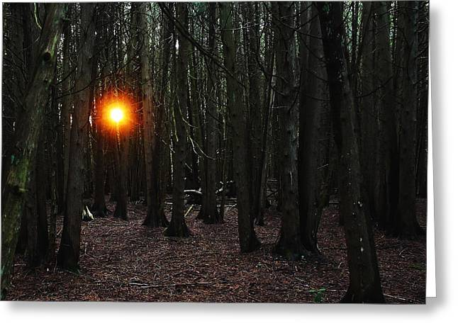 Greeting Card featuring the photograph The Guiding Light by Debbie Oppermann