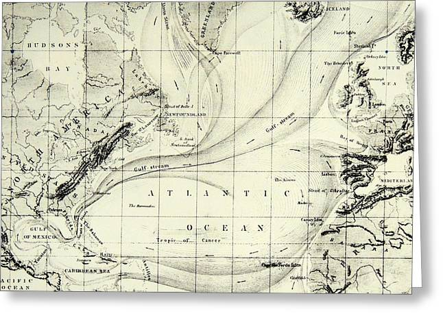 The Gulf Stream Of The Atlantic Ocean Greeting Card by  Elisee Reclus