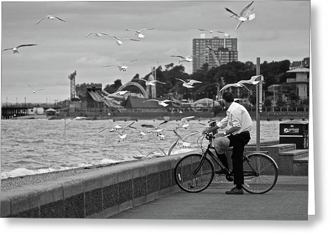 The Gull Man Greeting Card