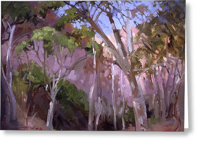 The Gum Grove Catalina Greeting Card