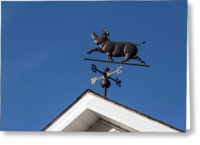 The Happy Piglet Weathervane Greeting Card