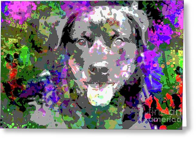 The Happy Rottweiler Greeting Card by Jon Neidert