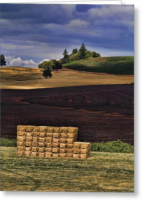 The Haystack Greeting Card by Bonnie Bruno