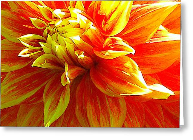 The Heart Of A Dahlia #2 Greeting Card