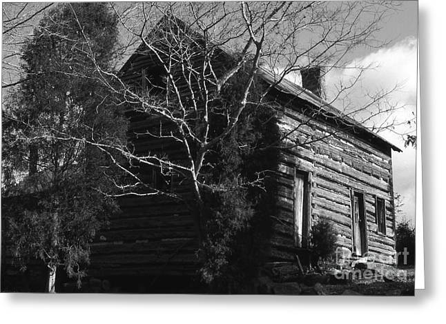 The Homestead Greeting Card by Richard Rizzo