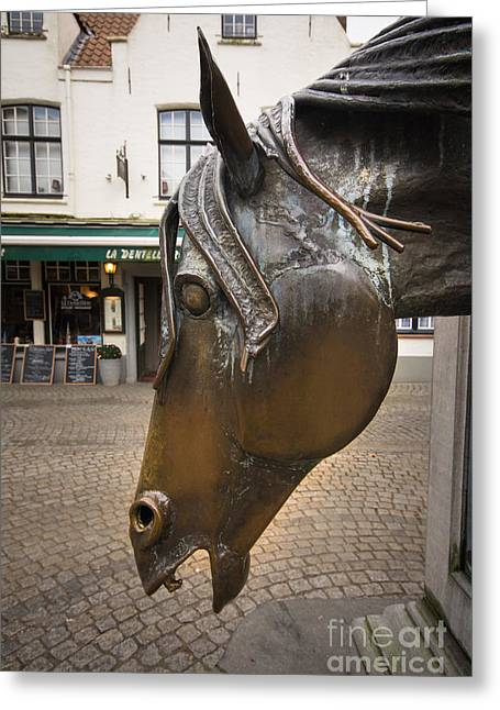 The Horses Head Greeting Card by Nichola Denny