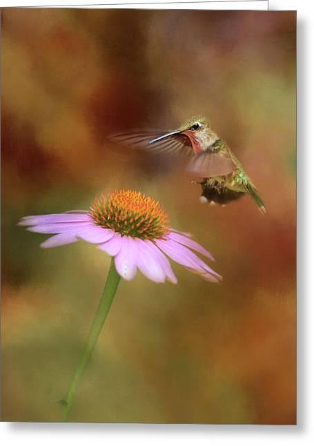 The Hummingbird Approach Greeting Card