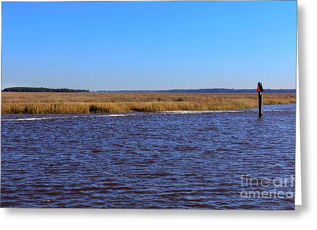 The Intracoastal Waterway In The Georgia Low Country In Winter Greeting Card by Louise Heusinkveld