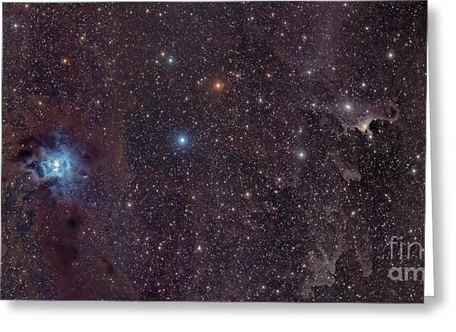 The Iris Nebula In Cepheus Greeting Card by John Davis