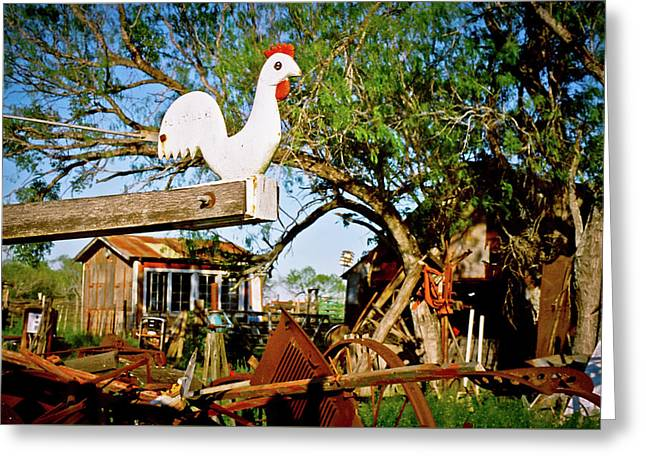 Greeting Card featuring the photograph The Iron Chicken by Linda Unger