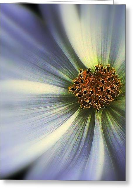 Greeting Card featuring the photograph The Jewel by Elfriede Fulda