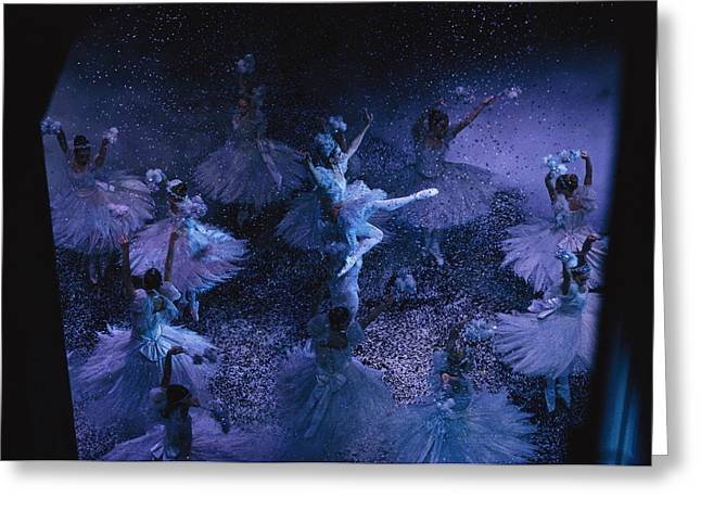 Medium Flowers Greeting Cards - The Joffrey Ballet Dances The Greeting Card by Sisse Brimberg
