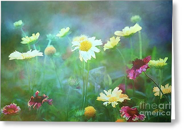 The Joy Of Summer Flowers Greeting Card