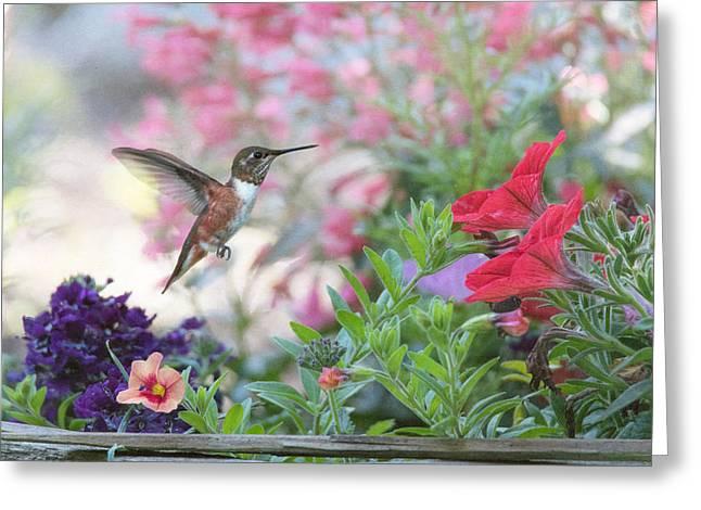 The Joys Of A Flower Garden Greeting Card