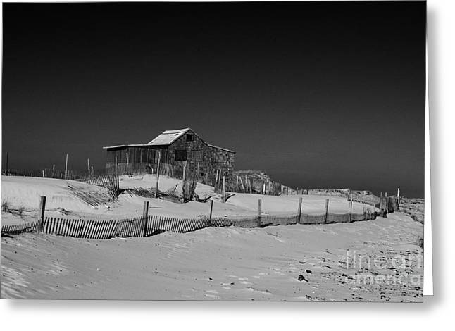 The Judges Shack At Island Beach State Park Greeting Card by Paul Ward