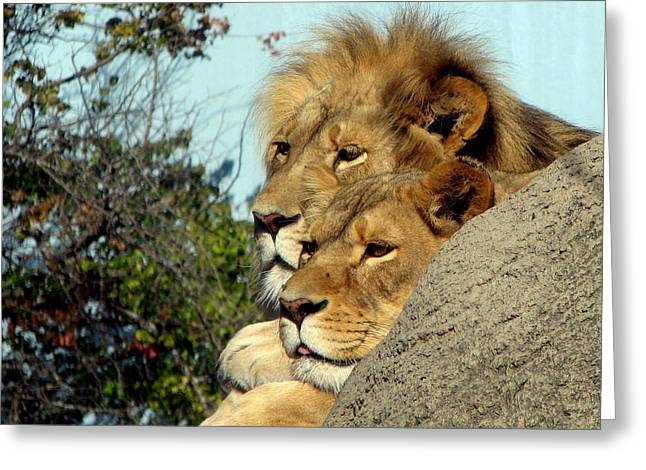 The King And Queen 1 Greeting Card by George Jones
