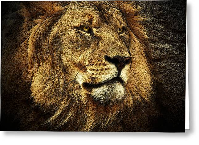 Greeting Card featuring the mixed media The King by Elaine Malott