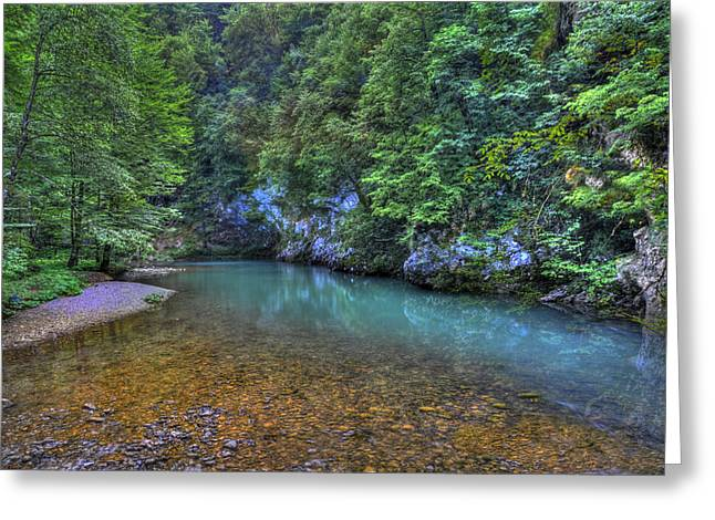 The Kupa River Greeting Card by Don Wolf