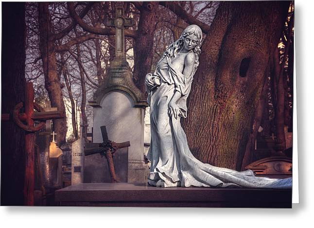 The Lady Of Powazki Greeting Card by Carol Japp