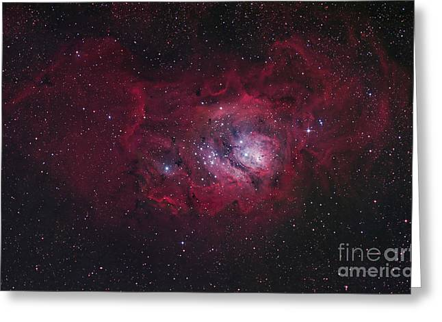 The Lagoon Nebula Greeting Card by Robert Gendler
