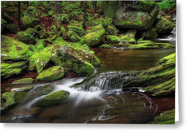 The Land Of Green Greeting Card by Bill Wakeley