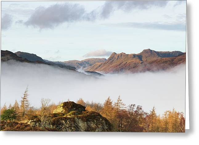 The Langdale Pikes From Holme Fell Greeting Card by Tony Higginson