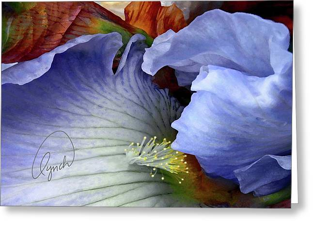 The Last Iris Greeting Card