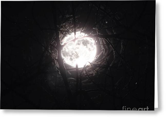 The Last Nights Moon Greeting Card
