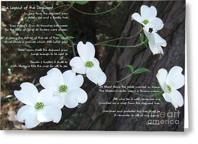 The Legend Of The Dogwood Greeting Card