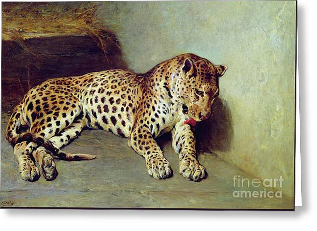 The Leopard Greeting Card by John Sargent Noble