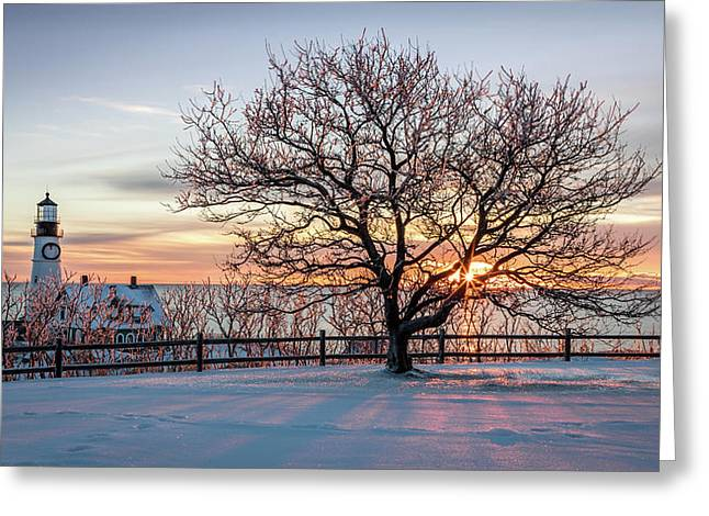 The Lighthouse And Tree Greeting Card