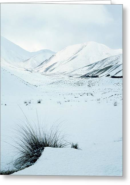 The Lindis Pass Greeting Card