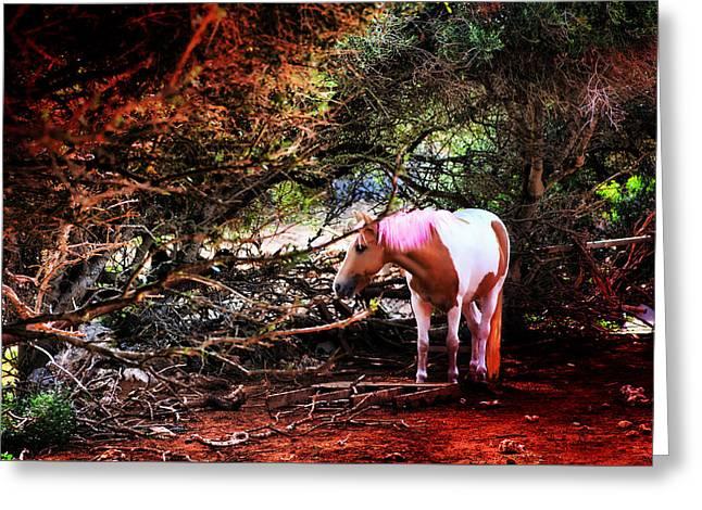 The Little Pink Unicorn By Pedro Cardona Greeting Card by Pedro Cardona Llambias