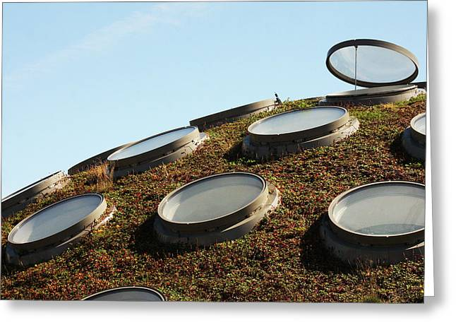The Living Roof Greeting Card by Art Block Collections