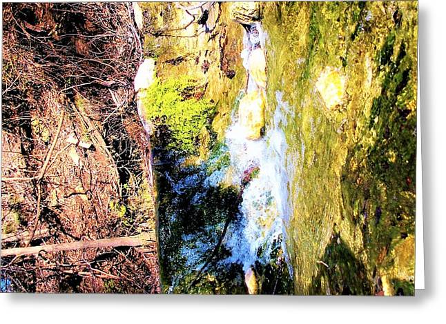 The Living Waters Greeting Card
