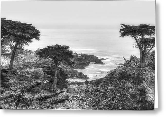 The Lone Cypress 2 Greeting Card by Serge Chriqui