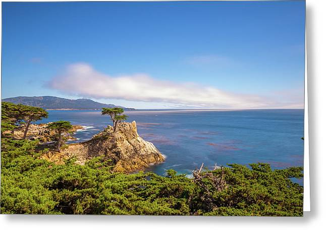 The Lone Cypress Pebble Beach Greeting Card by Scott McGuire