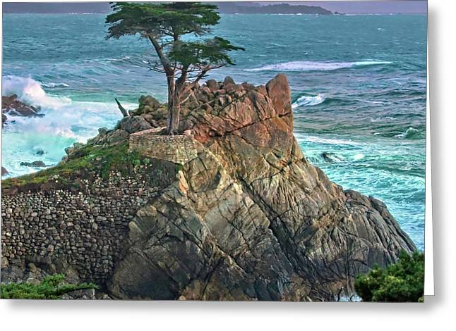 The Lone Cypress Greeting Card by Suzanne Stout