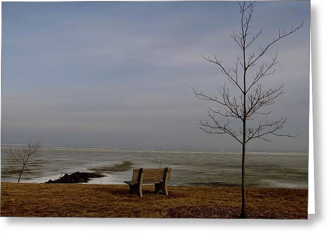 The Lonely Bench Greeting Card