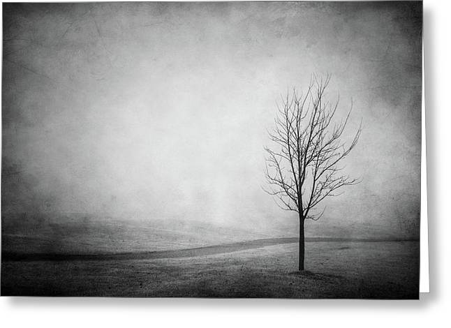 The Lonely Path Greeting Card