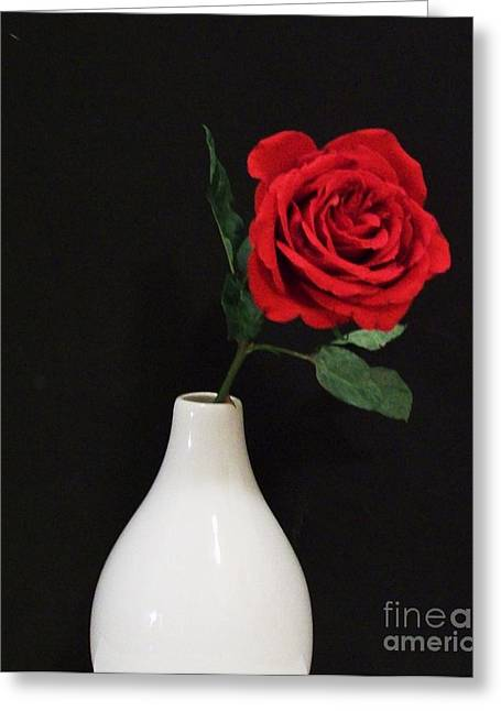 The Lonely Red Rose Greeting Card by Marsha Heiken