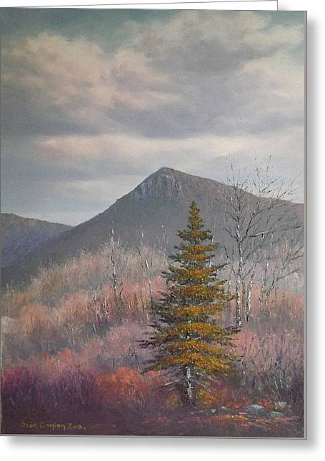 The Lonesome Pine Greeting Card by Sean Conlon