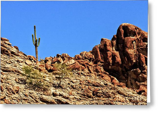 The Lonesome Saguaro Greeting Card by Robert Bales