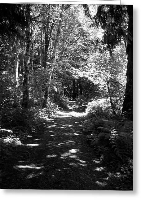 The Long And Winding Road  Bw Greeting Card by Ken Day